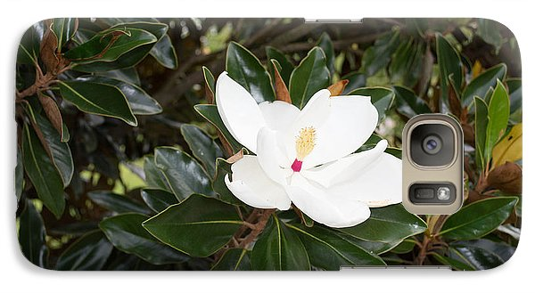 Galaxy Case featuring the photograph Magnolia Blossom by Linda Geiger