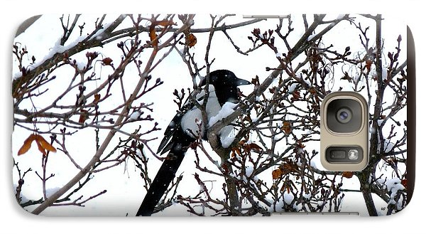 Galaxy Case featuring the photograph Magpie In A Snowstorm by Will Borden