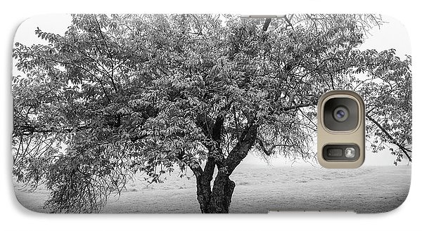 Galaxy Case featuring the photograph Maine Apple Tree In Fog by Ranjay Mitra