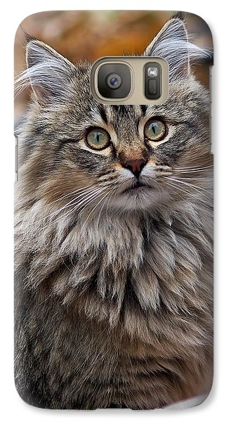 Maine Coon Cat Galaxy S7 Case