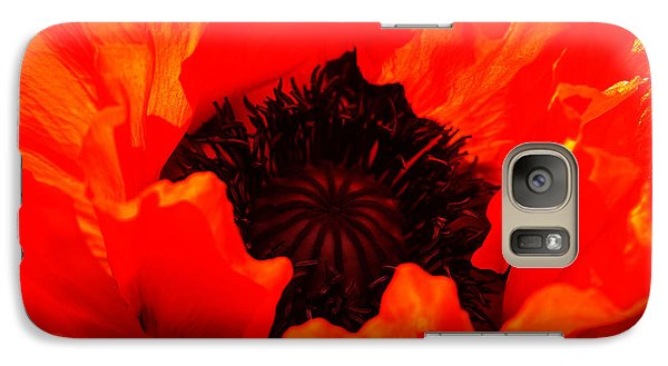Galaxy Case featuring the photograph Majestic Poppy by Baggieoldboy
