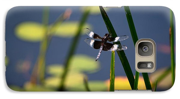 Galaxy Case featuring the photograph Male Broad-bodied Chaser by Brenda Bostic