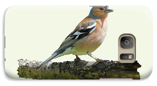 Galaxy Case featuring the photograph Male Chaffinch, Cream Background by Paul Gulliver
