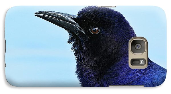 Galaxy Case featuring the photograph Male Grackle Beauty by Deborah Benoit