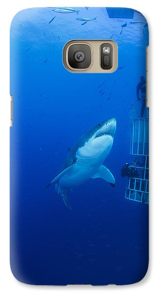 Male Great White With Cage, Guadalupe Galaxy Case by Todd Winner