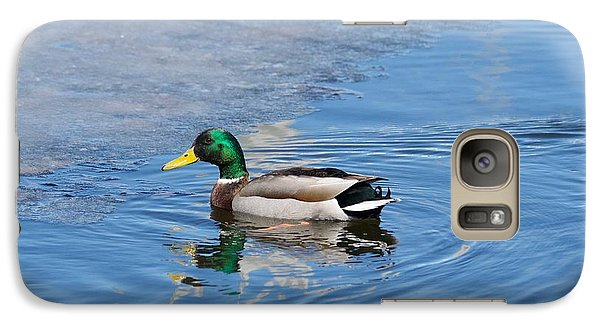 Galaxy Case featuring the photograph Male Mallard Duck by Michael Peychich