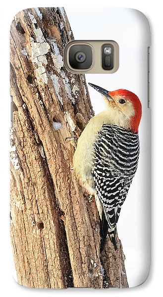 Galaxy Case featuring the photograph Male Red-bellied Woodpecker by Paul Miller