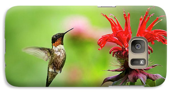 Male Ruby-throated Hummingbird Hovering Near Flowers Galaxy S7 Case