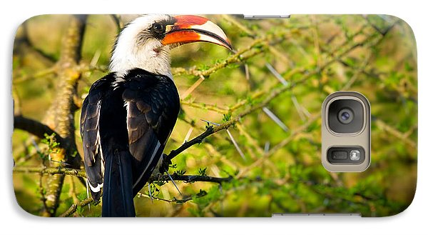 Male Von Der Decken's Hornbill Galaxy S7 Case by Adam Romanowicz