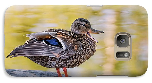 Galaxy Case featuring the photograph Mallard Duck by Kathy King