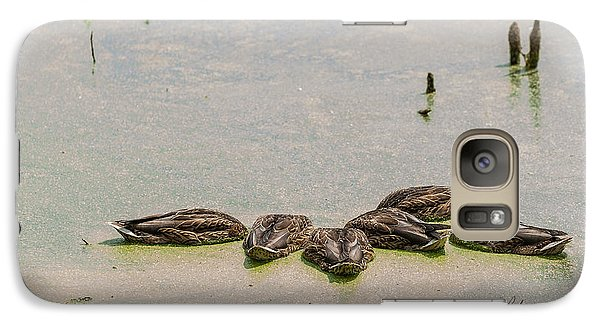 Galaxy Case featuring the photograph Mallard Fine Dining by Edward Peterson