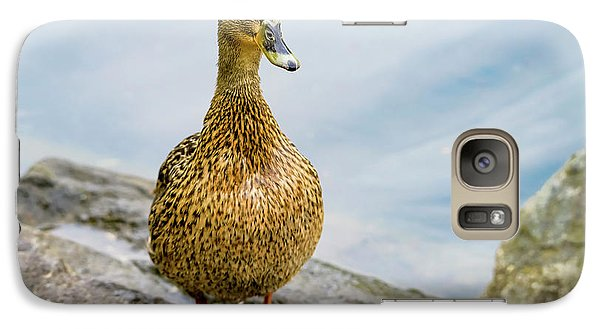 Galaxy Case featuring the photograph Mallard  by Kathy King