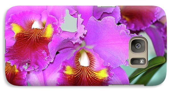 Galaxy Case featuring the photograph Many Purple Orchids by Lehua Pekelo-Stearns