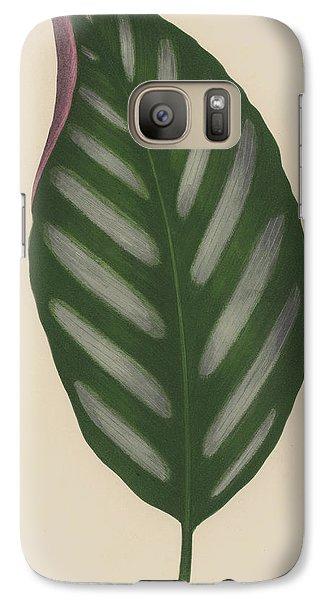 Maranta Porteana Galaxy S7 Case