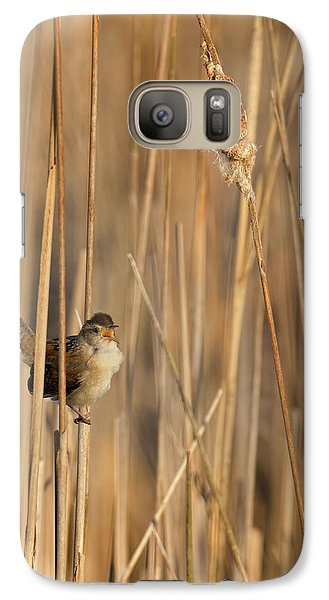Marsh Wren Galaxy S7 Case by Bill Wakeley
