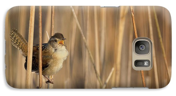 Marsh Wren Square Galaxy S7 Case by Bill Wakeley