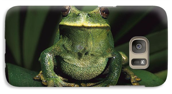 Marsupial Frog Gastrotheca Orophylax Galaxy Case by Pete Oxford