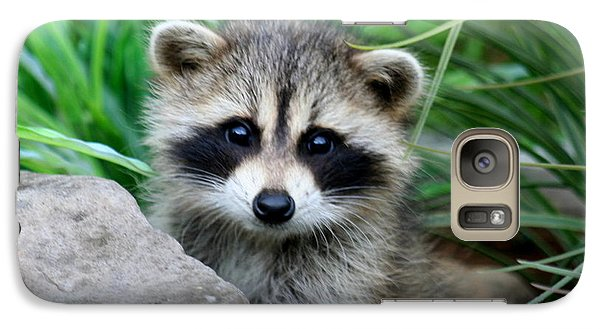 Galaxy Case featuring the photograph Masked Critter by Diane Merkle