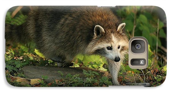 Galaxy Case featuring the photograph Maskless Raccoon by Doris Potter