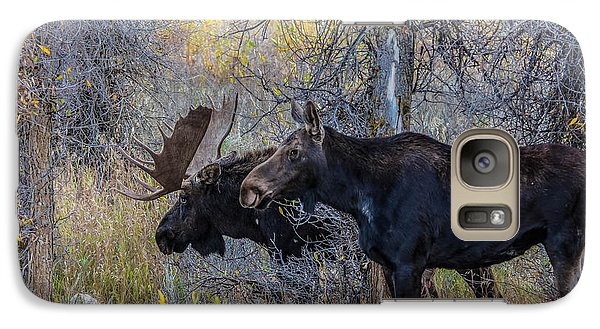 Galaxy Case featuring the photograph Mating Moose by Kelly Marquardt