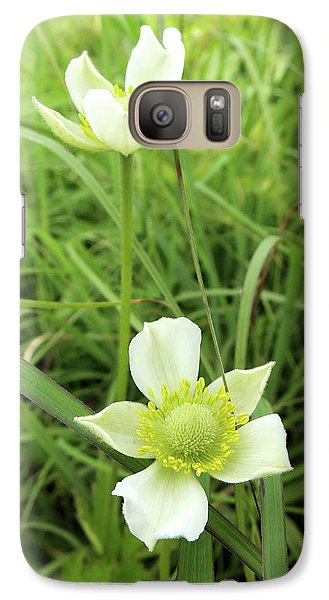 Galaxy Case featuring the photograph Meadow Anemone by Scott Kingery