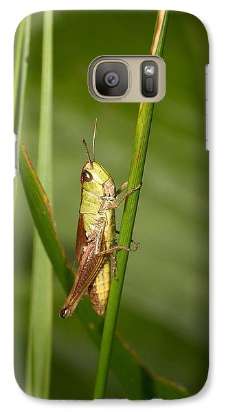 Galaxy Case featuring the photograph Meadow Grasshopper by Jouko Lehto