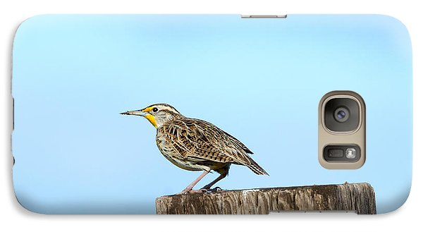Meadowlark Roost Galaxy S7 Case by Mike Dawson
