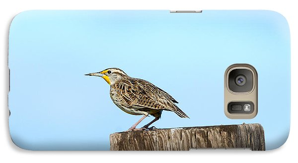 Meadowlark Roost Galaxy Case by Mike Dawson