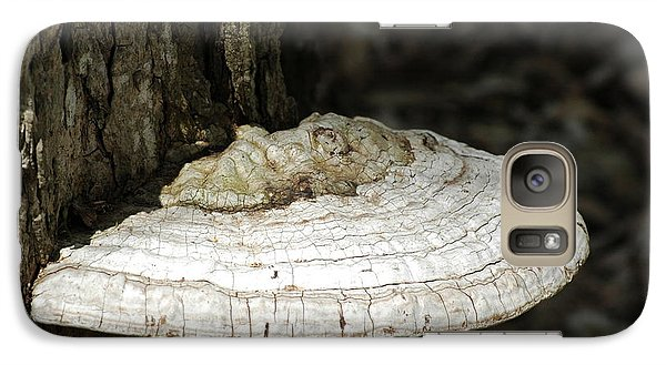 Galaxy Case featuring the photograph Michigantree Fungi by LeeAnn McLaneGoetz McLaneGoetzStudioLLCcom