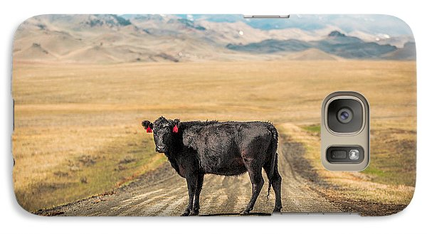 Cow Galaxy S7 Case - Middle Of The Road by Todd Klassy