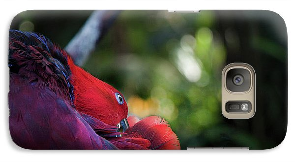 Galaxy Case featuring the photograph Miksang 4 Parrot by Theresa Tahara