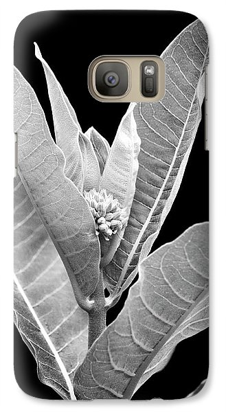 Galaxy Case featuring the photograph Milkweed Black And White by Christina Rollo