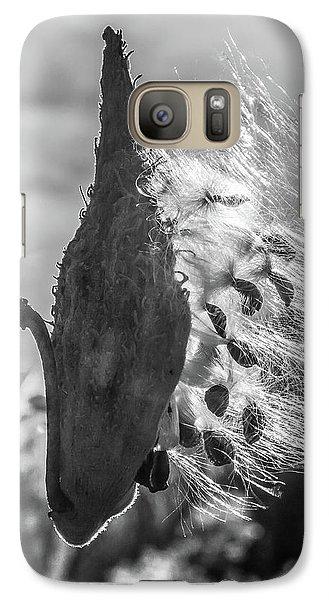 Milkweed Pod Back Lit B And W Galaxy S7 Case