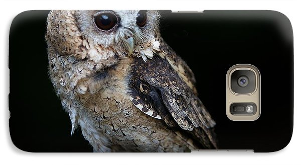 Galaxy Case featuring the photograph Minature Owl by Gary Bridger