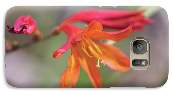 Galaxy Case featuring the photograph Misplaced Beauty by Linda Lees