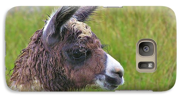 Galaxy Case featuring the photograph Misty Macchu Picchu Llama by Michele Penner