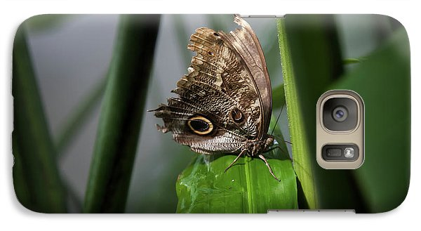 Galaxy Case featuring the photograph Misty Morning Owl by Karen Wiles