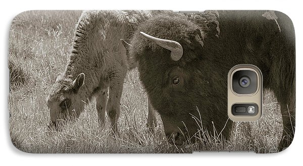 Galaxy Case featuring the photograph Mom And Baby Buffalo by Rebecca Margraf