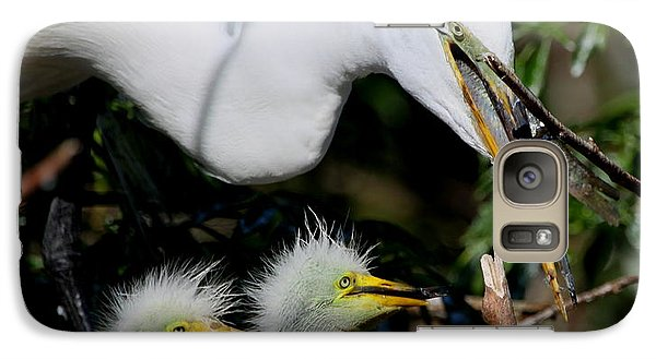 Galaxy Case featuring the photograph Momma Took Our Food by Barbara Bowen