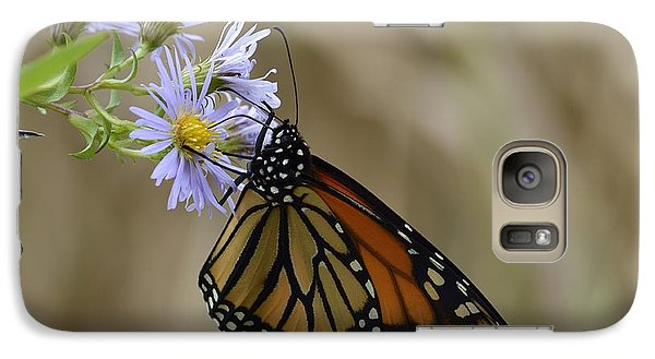 Galaxy Case featuring the photograph Monarch 2015 by Randy Bodkins