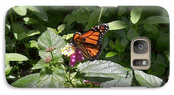 Galaxy Case featuring the photograph Monarch Butterfly Feeding by Carol  Bradley