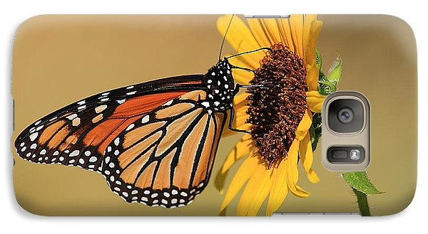 Galaxy Case featuring the photograph Monarch Butterfly On Sun Flower by Sheila Brown