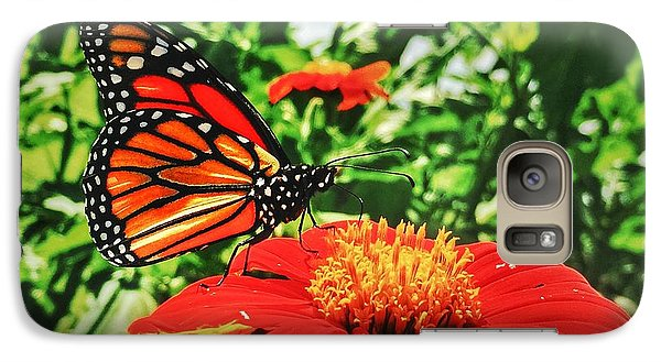Galaxy Case featuring the photograph Monarch Of The Flowers  by Jame Hayes