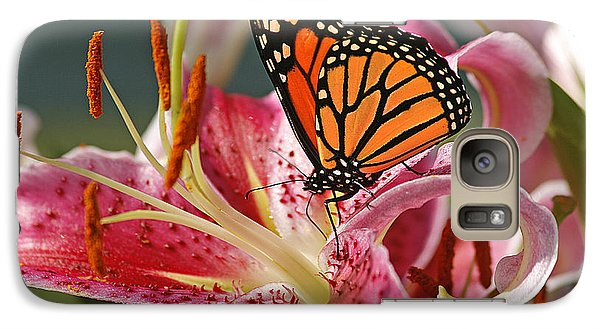 Lily Galaxy S7 Case - Monarch On A Stargazer Lily by Cindi Ressler