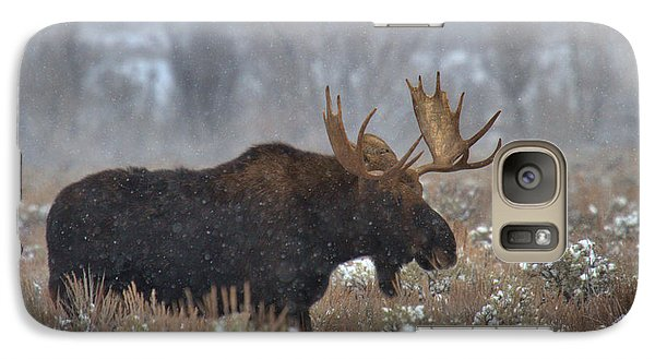 Galaxy Case featuring the photograph Moose In The Fog by Adam Jewell