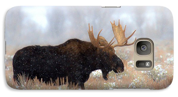 Galaxy Case featuring the photograph Moose In The Fog Silhouette by Adam Jewell