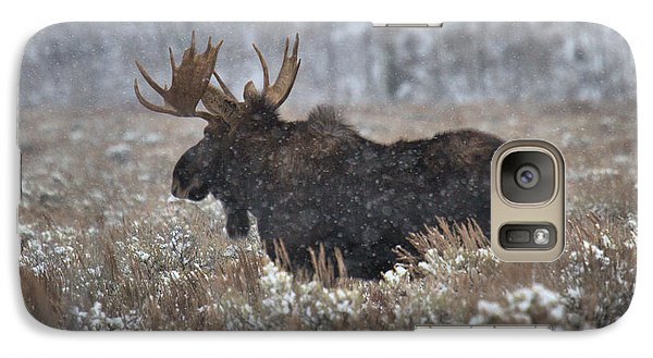 Galaxy Case featuring the photograph Moose In The Snowy Brush by Adam Jewell