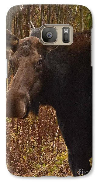 Galaxy Case featuring the photograph Moose Portrait by Sam Rosen