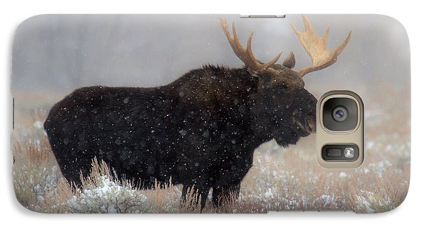 Galaxy Case featuring the photograph Moose Winter Silhouette by Adam Jewell