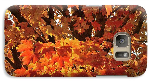 Galaxy Case featuring the photograph Moraine Hills Sugar Maple by Ray Mathis